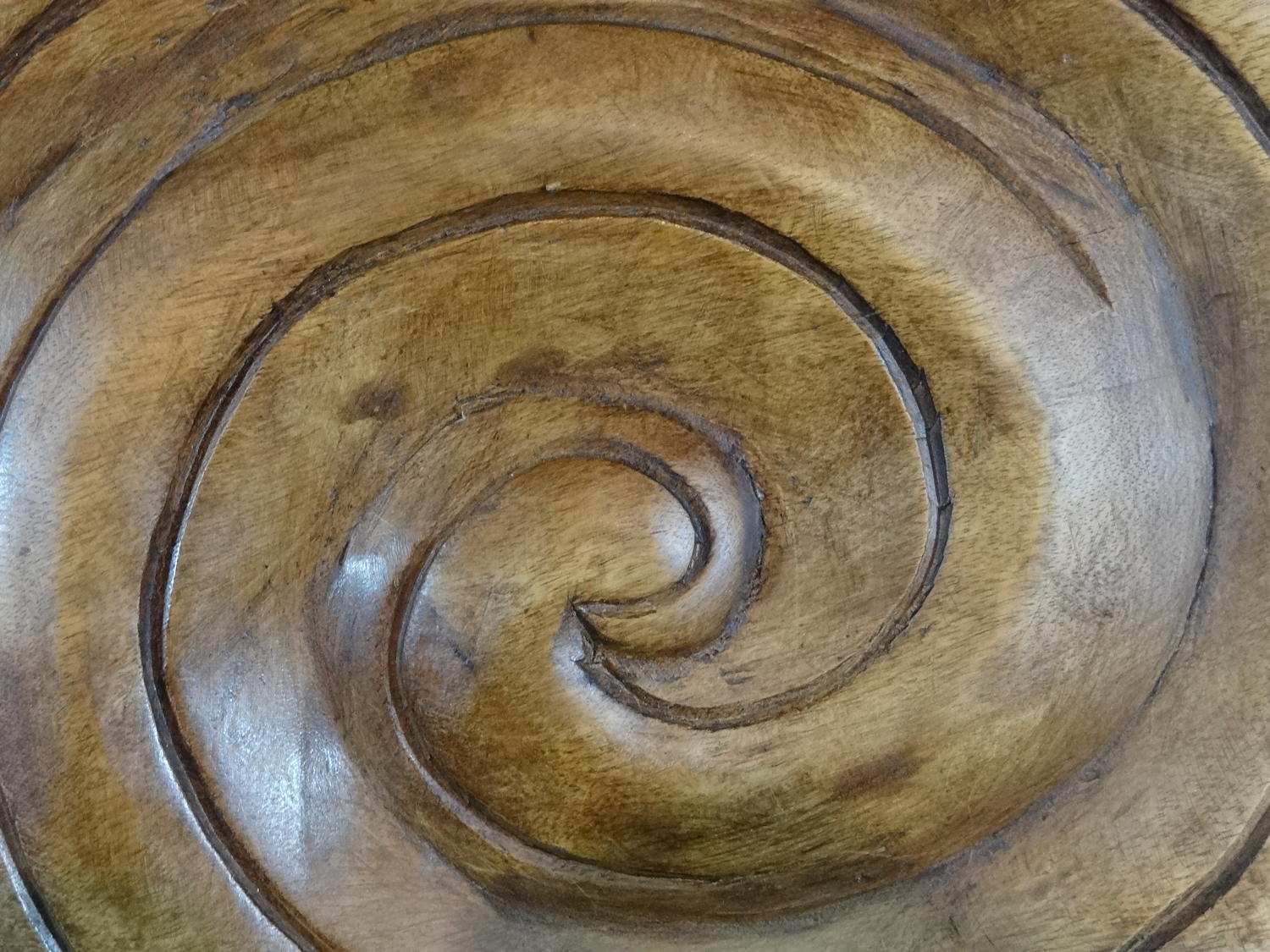 Wooden ammonite